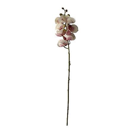 Galho de Orquídea Siliconada Fran DM-0013BL