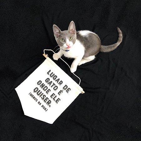 Flâmula Lugar de Gato