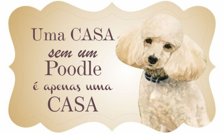1712G-024 Placa MDF - Poodle
