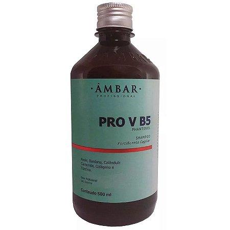Âmbar Pro V B5 Panthenol Shampoo 500ml