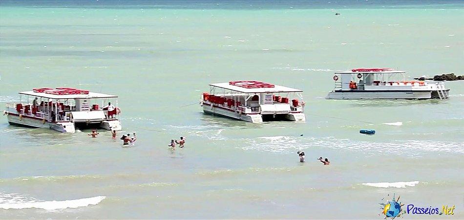 Maracajaú + Mergulho (Catamarã)