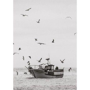 Fisherman Ericeira Portugal Dois