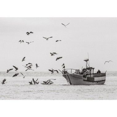 Fisherman Ericeira Portugal Um