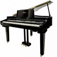 Piano Digital Tokai TP-88C