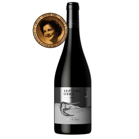 Vinho Septima Noite Pinot Noir