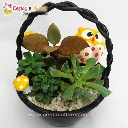 Vasinho de Cactus e Suculentas