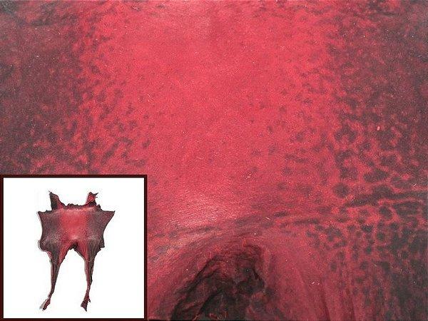 Pele de Rã Exótica - Cor: Vermelho