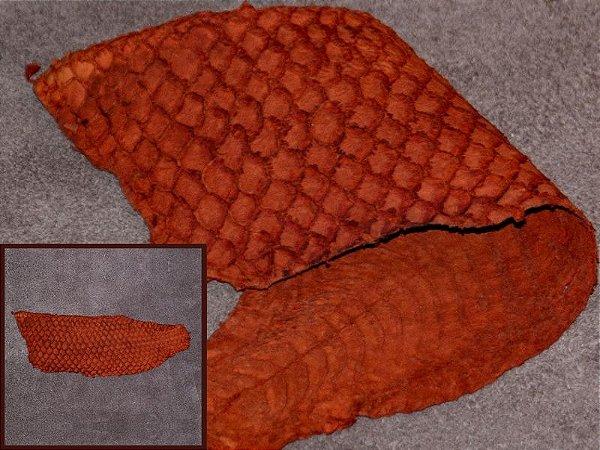 Pele de Peixe Tilápia - Cor: Pinhão