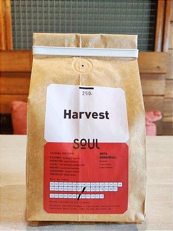Café Moído Harvest Faz. Venturim Soul 250g