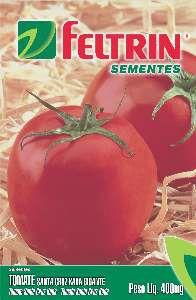 Semente Tomate Santa Cruz Kada - Feltrin - 25 unidades