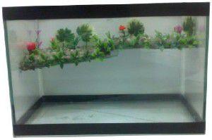 Terrário Aquaterrare - Club Pet - (35 cm x 20 cm x 22 cm)