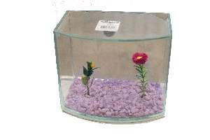Beteira Vision Decorada Nº 2 - Club Pet - (14 cm x 12 cm x 17 cm)
