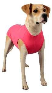 Roupa Pós-Cirúrgica para Cães e Gatos Nº 2 vermelha - Rayssas Pet - 33 cm