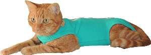 Roupa Pós-Cirúrgica para Cães e Gatos Nº 4 verde - Rayssas Pet - 38 cm
