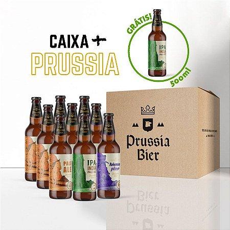 Caixa 9 garrafas + IPA 500ml (Grátis)