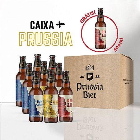 Caixa 9 garrafas + Red Ale 500ml (Grátis)