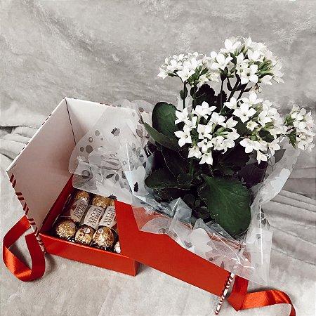 Caixa Surpresa Flor e Ferrero  Cod CA003