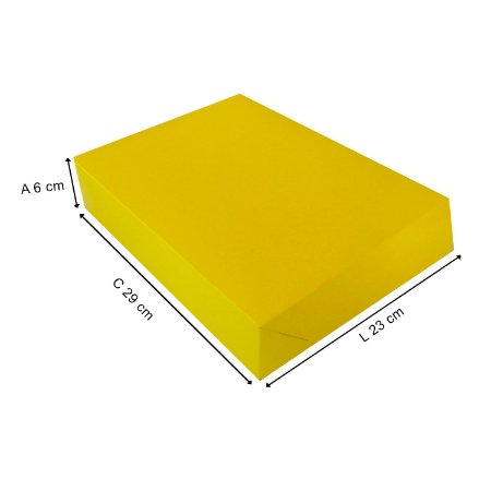 Caixa Para Presente G 29x23x6 Cm - 20 Unidades