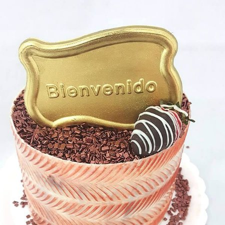 Forma para Chocolate Placa Bienvenido Forma Simples Ref. 9527 BWB 5unids
