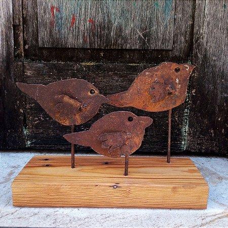 Filhotes de passarinho 1