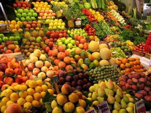 Kit c/ 3 de Mudas Frutíferas