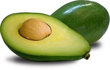 Abacate Quintal - Muda exertada