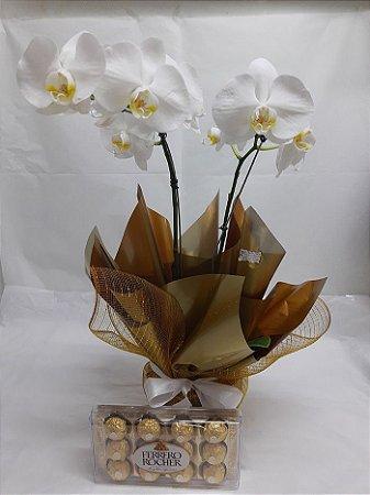 Orquídea Phalaenopsis Branca + Ferrero Rocher