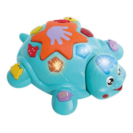 Tartaruga Bate e Volta Baby DMB5788 Dm Toys