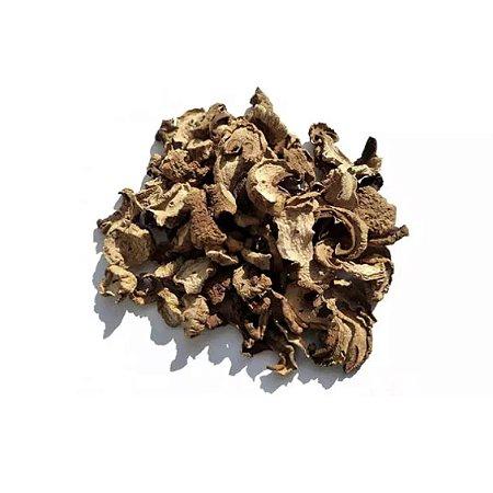Funghi Seco (Premium)