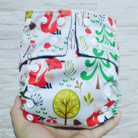 Raposa - Brasileirinha - Pull - Pocket - Interior em Dry-fit