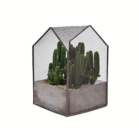 Vaso Casinha com Cactus-Maçã do Peru G