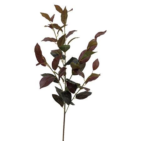 Galho Folhas Magnolia