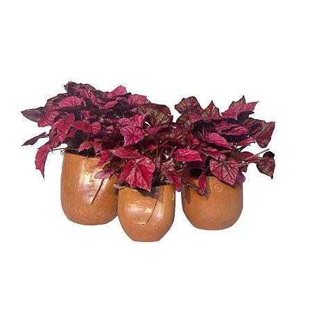 Vaso Barro Vic Meirelles com Flores Vermelhas