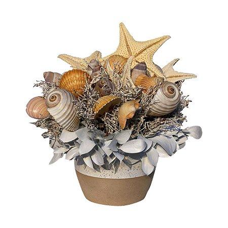 Arranjo de Conchas em Vaso de Cerâmica