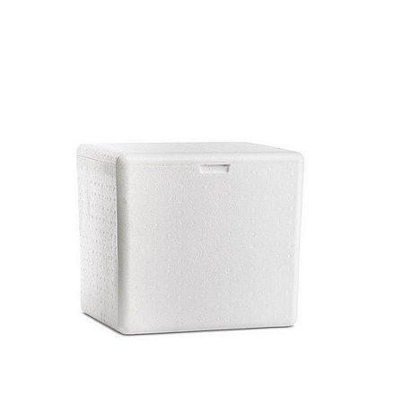 Caixa de Isopor 44/45L   Ideal para Mochila de Motoboy
