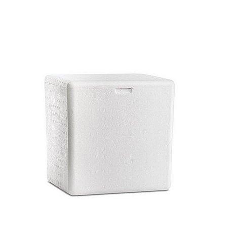 Caixa de Isopor 60L