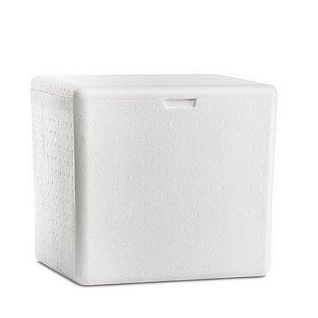 Caixa de Isopor 165L