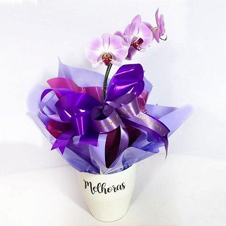 Orquídea Vaso Especial