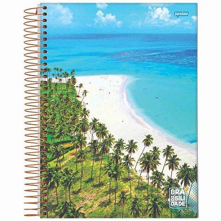 Caderno Espiral 1/4 Flexível 96 folhas Brasilidade - Jandaia