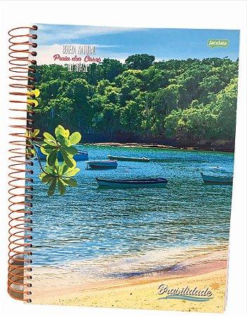 Caderno Universitário 200 folhas Capa Dura Brasilidades - Jandaia