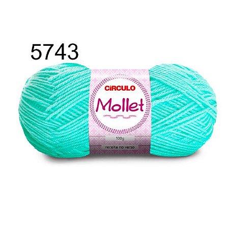Lã Mollet 100gr 200m Cor 5743 Neo Mint - Círculo