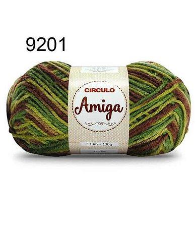 Lã Amiga Cor 9201 Floresta 100 Gramas