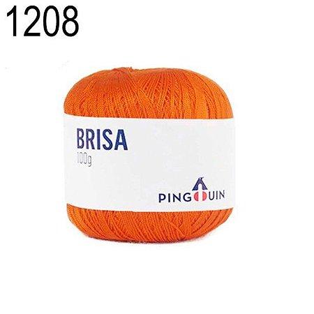 Linha Brisa Cor 1208 Naranja  100 Gramas 500 Metros