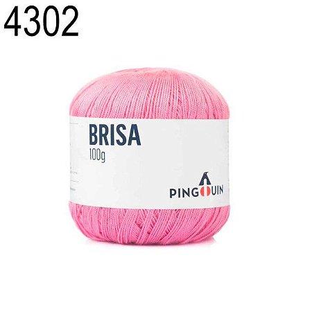 Linha Brisa Cor 4302 Soft  100 Gramas 500 Metros
