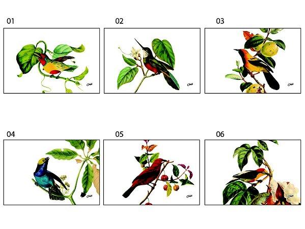 Jogo Americano Retangular - Pássaros em fundo branco (Conjunto de 6 unidades)