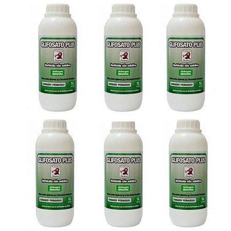 Kit 6 Unidades Glifosato Plus Herbicida Pikapau 1L