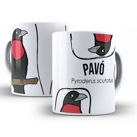 Caneca do Pavó (Pyroderus scutatus)