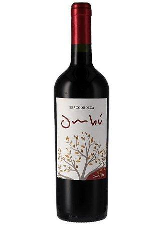 Vinho Uruguaio Braccobosca Ombú Tannat