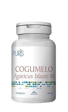 Cogumelo Agaricus Blazei - 120 Cápsulas