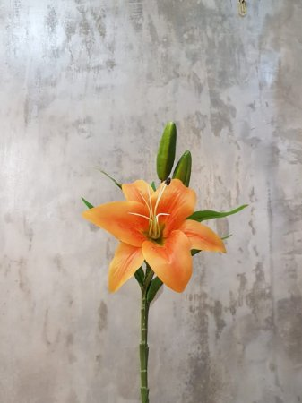 Lírio Laranja(Lilium alexandrae) Premium/Toque real